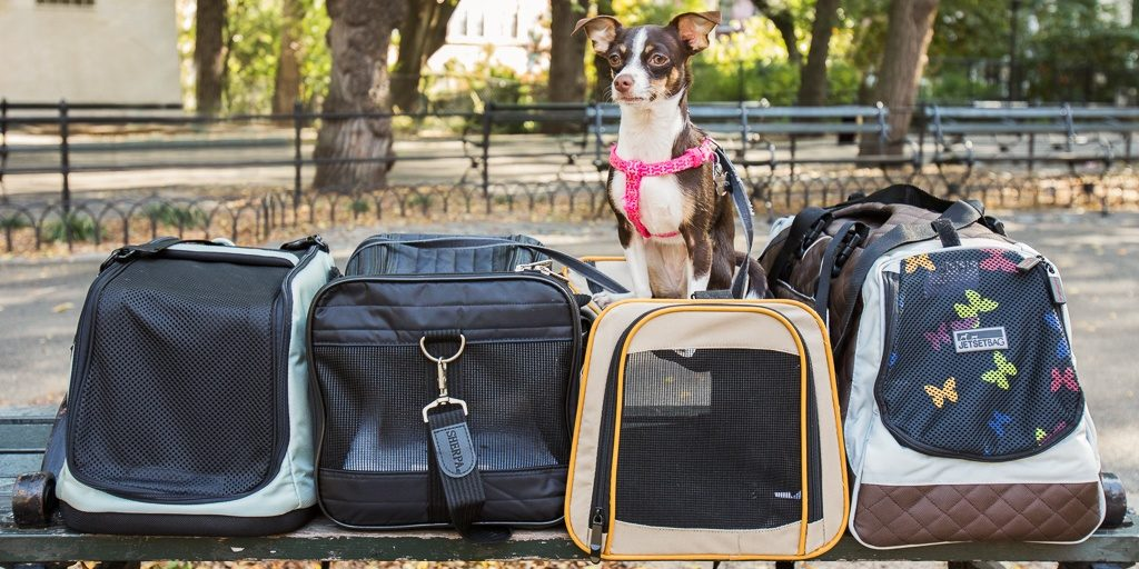 sac-transport-chat-chien