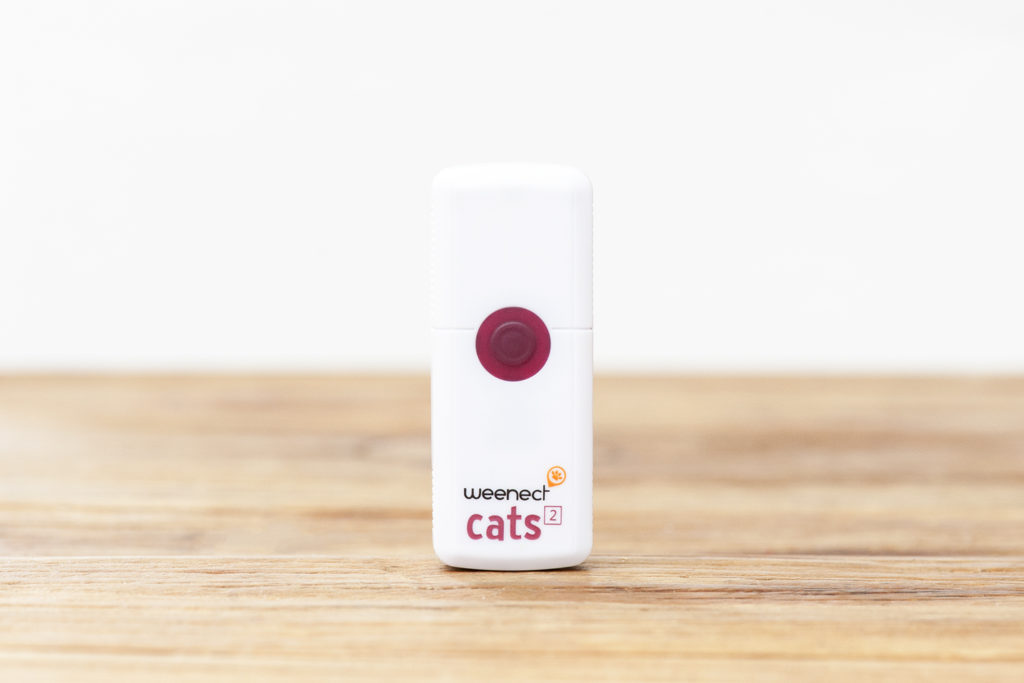 collier-gps-chat-weenect-cats